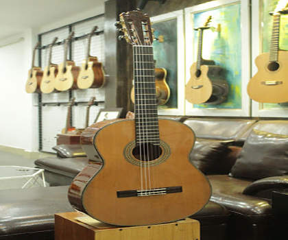 Bán Đàn guitar Martinez ES-04