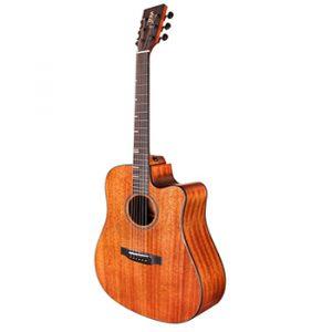 Bán đàn Guitar HDC-350