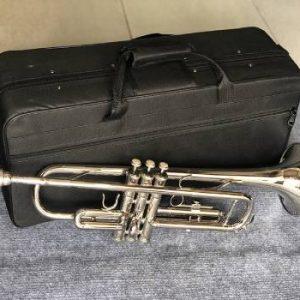 Địa chỉ bán kèn trumpet tony trắng chất lượng
