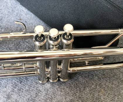 Gía kèn trumpet lazer trắng