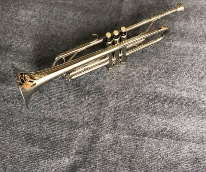 Báo giá kèn trumpet tony trắng