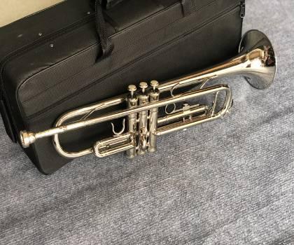 Kèn trumpet tony trắng giá rẻ
