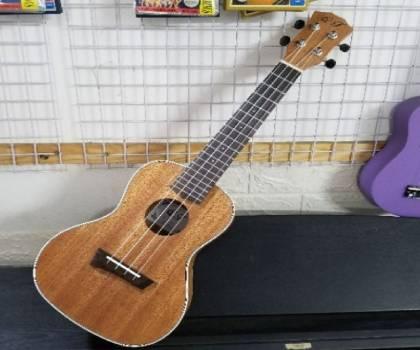 Bán đàn ukulele size 24