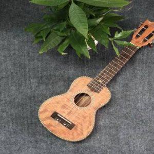 Mua đàn ukulele size 21