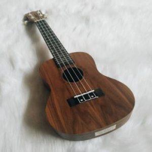 Mua đàn ukulele size 24
